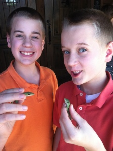 jacob and bowen with lizards